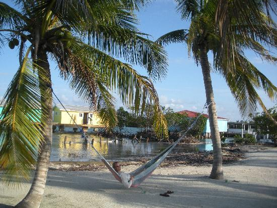 Hugh Parkey's Belize Adventure Lodge: chillin' in the hammock. New cabanas in the background