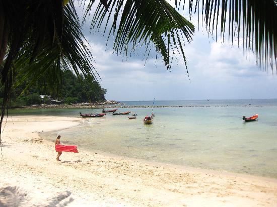Salad Beach : the beach