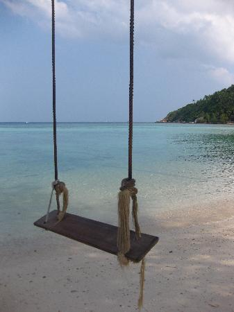 Salad Beach : swing on the beach