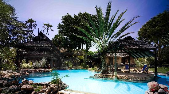 Заповедник Шаба, Кения: Sarova Shaba Swimming Pool