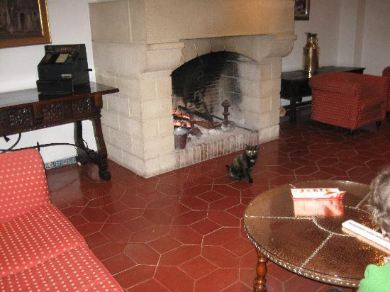Sol Don Pedro: Cat in front of coal fire in lounge