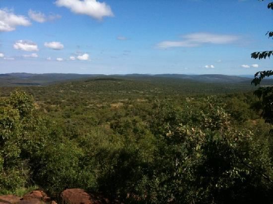 Nedile Lodge: .. with a stunning view into the bush ...