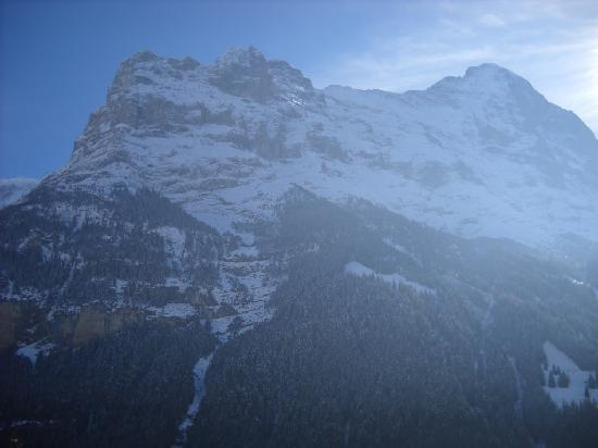 ‪‪Grindelwald‬, سويسرا: Grindelwald, Switzerland, Feb., 2011‬