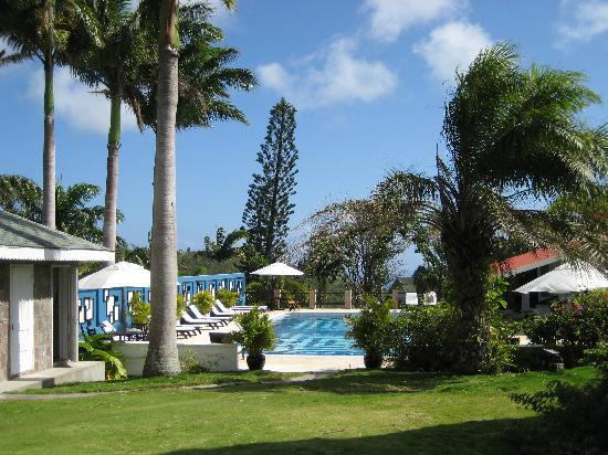 Charlestown, Nevis: Pool from Garden