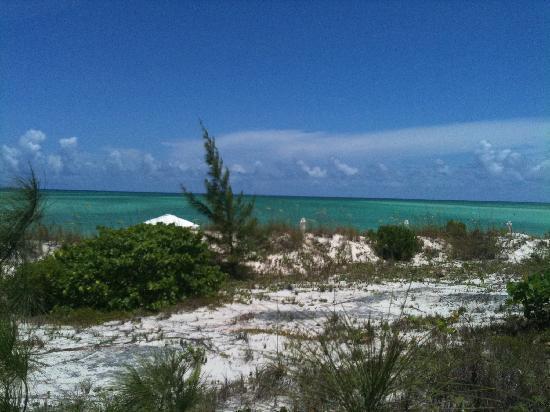 COMO Parrot Cay, Turks and Caicos: la spiaggia dalla piscina