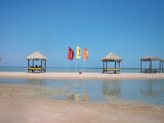 Laguna Vista Garden Resort : beach again