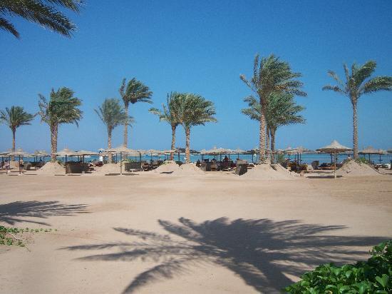 Laguna Vista Garden Resort : beach bar
