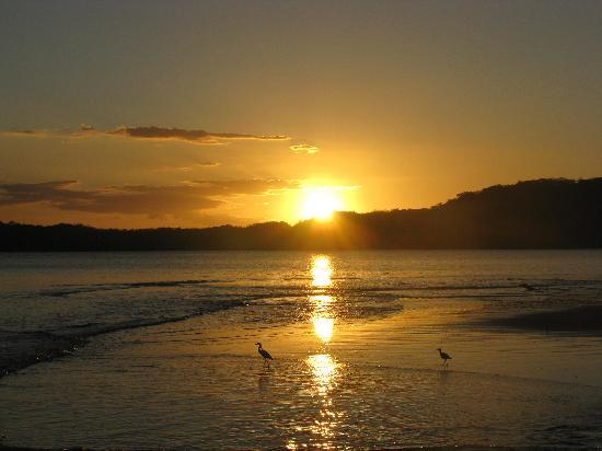 Allegro Papagayo: Sunset at hotel beach