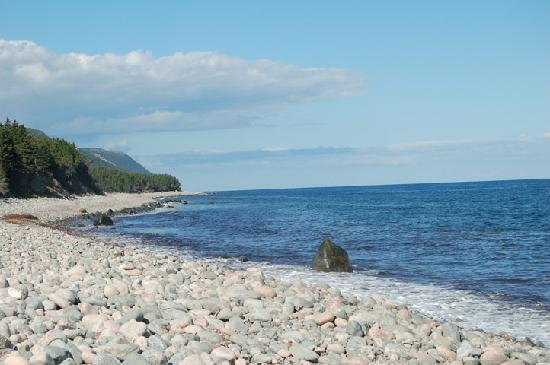 The Maven Gypsy Bed & Breakfast & Cottages: Rustic Cape Breton Beach