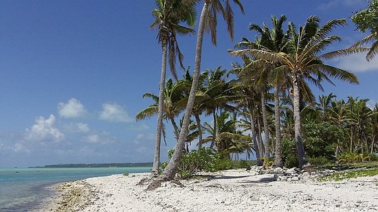 Aitutaki, Îles Cook : Palm Tree Isle