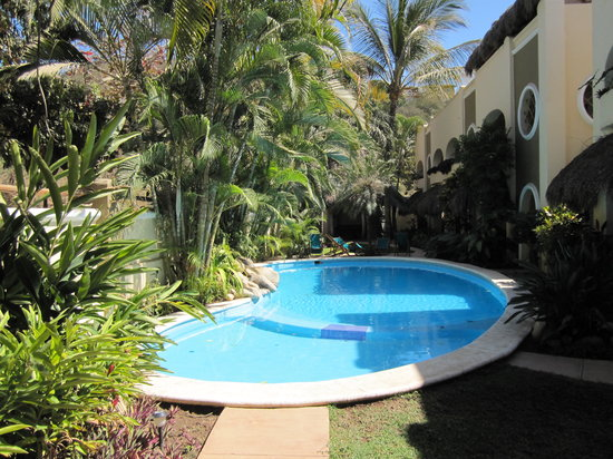 Hotel Villas Sayulita : pool