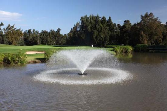 Penina Hotel & Golf Resort: Par 4 Green