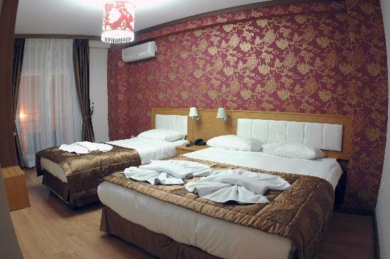 Flower Palace Hotel: Family room