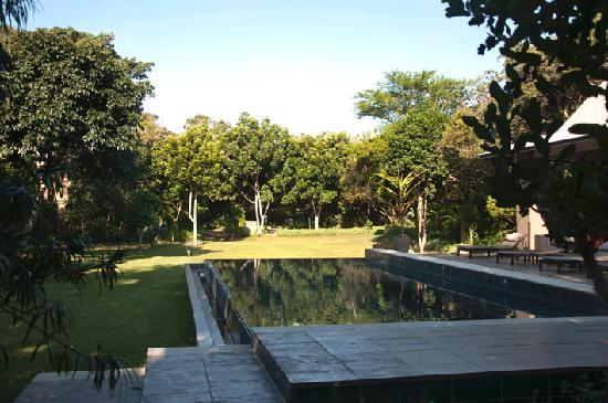 Prana Lodge: The swimming pool