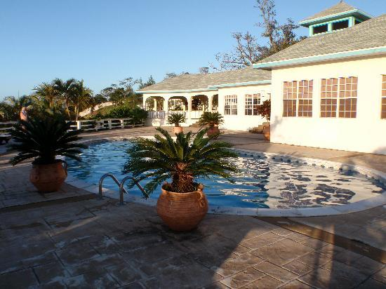 Turquoise Bay Dive & Beach Resort : La piscine