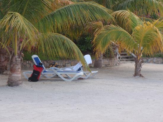 Turquoise Bay Dive & Beach Resort : Ombre et chaises en quantité