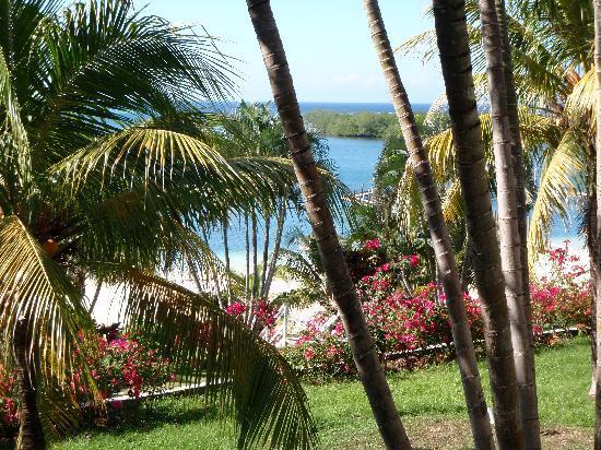 Turquoise Bay Dive & Beach Resort: Vue de la chambre 5