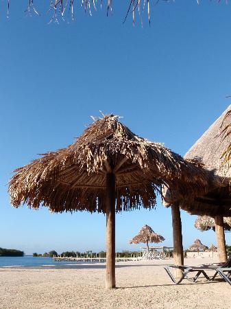 Turquoise Bay Dive & Beach Resort: Il y a aussi des palapas