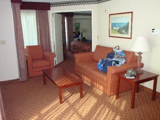 La Quinta Inn & Suites Anaheim Disneyland: living room