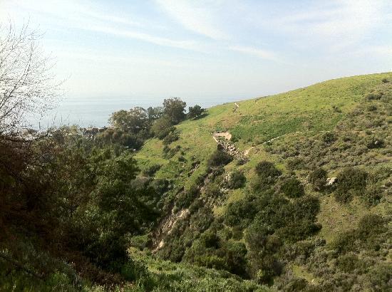 Vista Seen From Hortense Miller Gardens