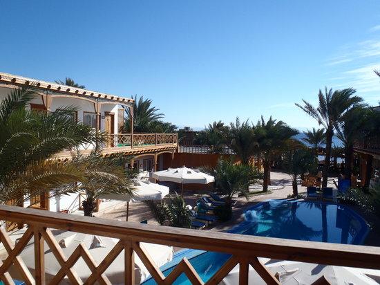 Acacia Dahab Hotel: Terrace View