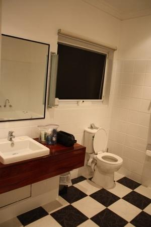 Comfort Inn The International: Washroom