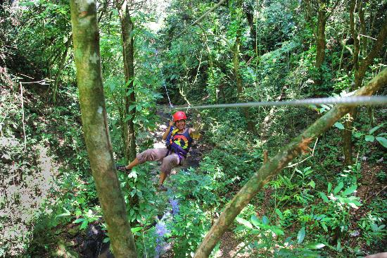 Tropical Adventures : Soaring 250 ft. through the canopy
