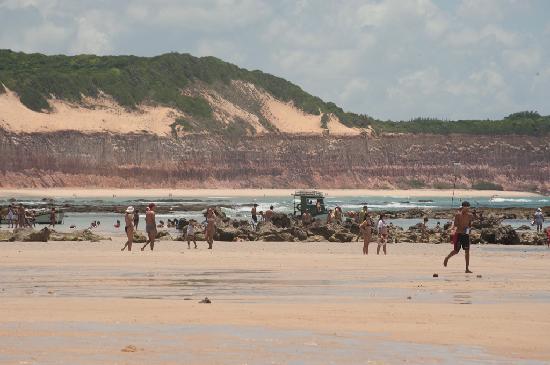Praia de Pipa, RN : Pipa's beach