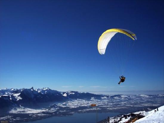 Berghaus Niederhorn : Paraglider above Niederhorn
