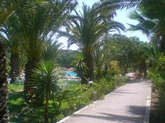 smartline Mediteranée: giardino 3