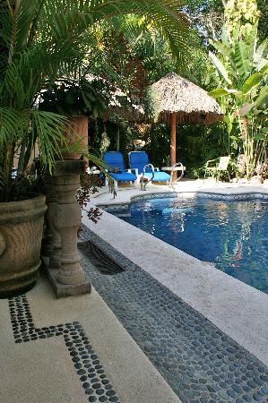Casa Candiles Inn : fountains and plants surround the pool
