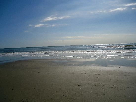 North Beach Plantation: Beach