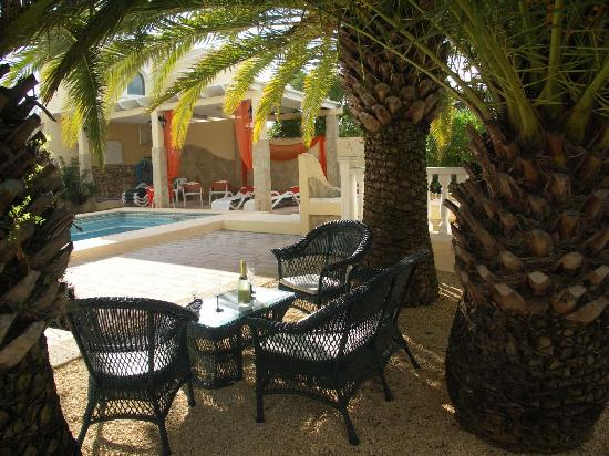 La Palmeria: Pool