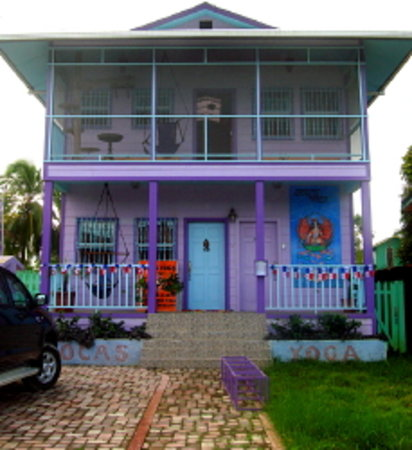 Bocas Yoga : Welcome to the Purple House on Positively 4th Street!
