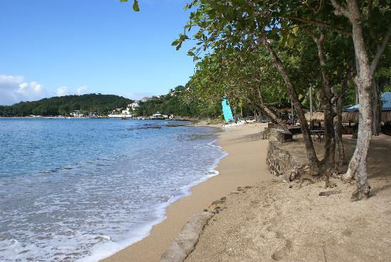 East Winds: Beach