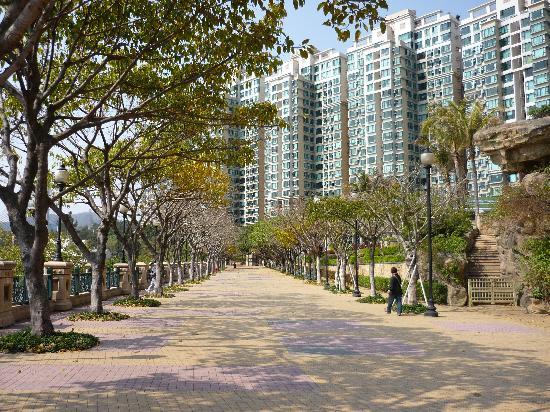 Noah's Ark Resort: Walk from the ferry