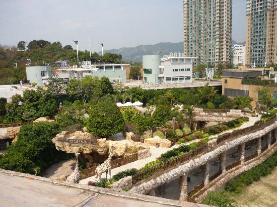 Noah's Ark Resort: View of the garden