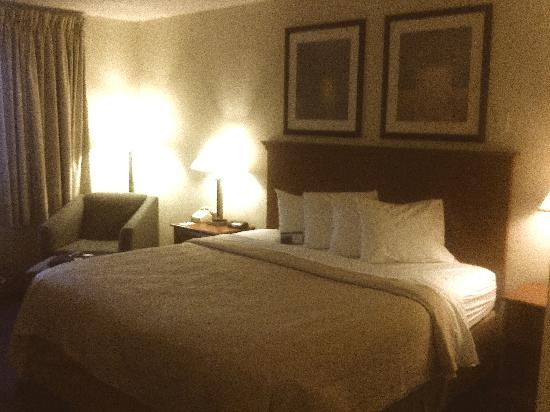 Quality Inn : Bed