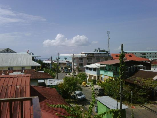 Coconut Hostel: View from the Terrace.