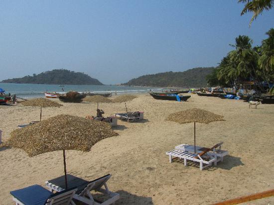 Palolem Beach Resort: View from the Restaurant