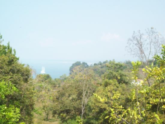 Backpackers Manuel Antonio: the poolside ocean view