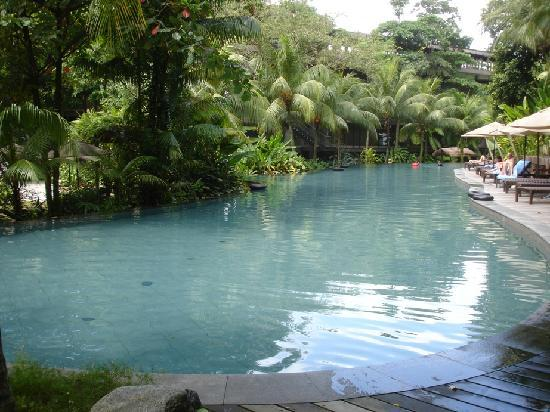 Best pool in singapore picture of siloso beach resort - Siloso beach resort swimming pool ...