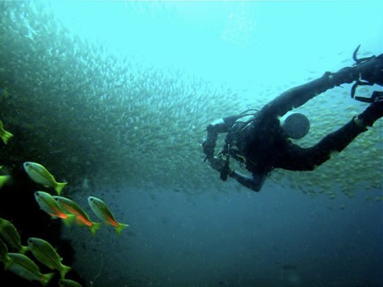 Haad Yao Divers