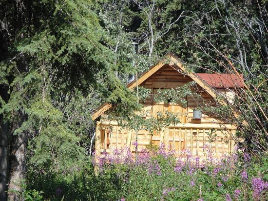 Tagish Wilderness Lodge : Eines der Cabins