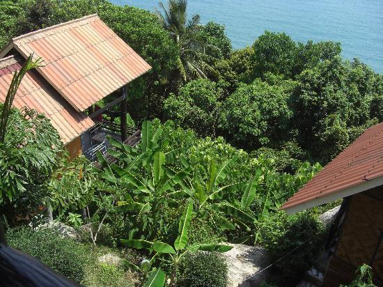 Seaview Bungalows Thansadet: Garten Eden
