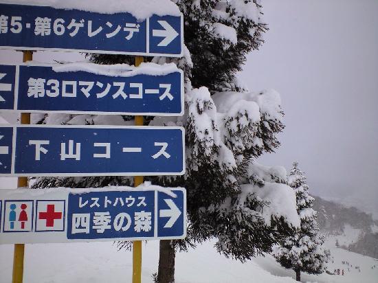 Okukannabe Ski Area: 奥神鍋