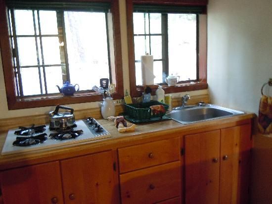 Sunset Inn Yosemite Vacation Cabins: Charming Sugar Pine Cabin - super clean kitchenette