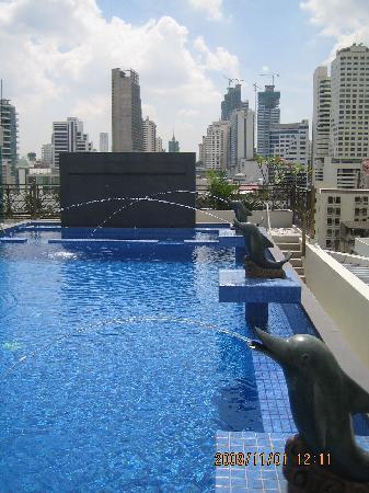 Nice view rooftop pool