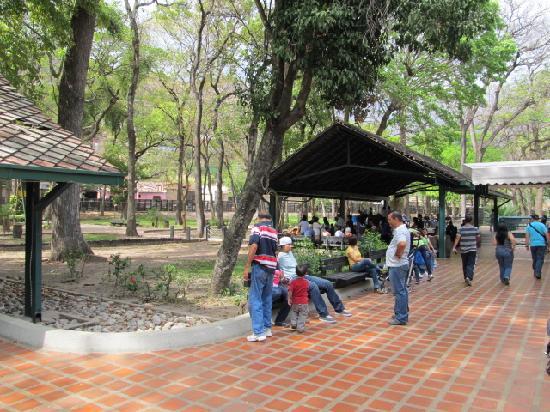 Jose Rafael Revenga, Venezuela: parte de la estación el Consejo de la Hda. Santa Teresa