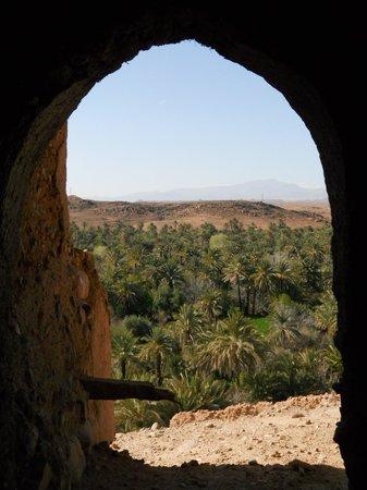 Kasbah Ait Ben Damiette: Vue Palmeraie